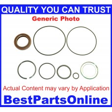 Heavy Duty Pump Seal kit Saginaw With Standard Shaft Seal Design